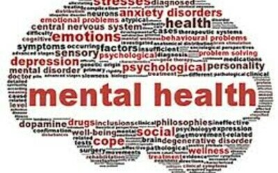 ONOWAY MENTAL HEALTH SERVICES - 780-967-9117